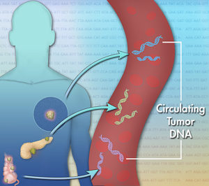 Testing tumor DNA in the bloodstream is replacing biopsies for some cancers. (Jonathan Bailey, NHGRI)