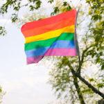 930px-Rainbow_Flag_(18245119582)