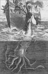 Alecton_giant_squid_1861